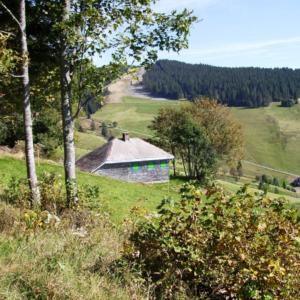 Heideggers hut.